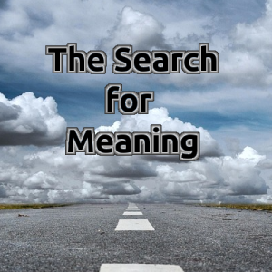 Blog_TheSearchforMeaning